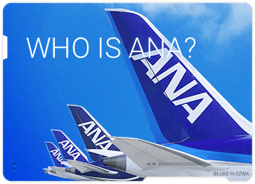 WHO IS ANA?